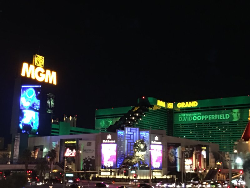 MGM complex is one of the largest luxury hotels/ resorts in Las Vegas