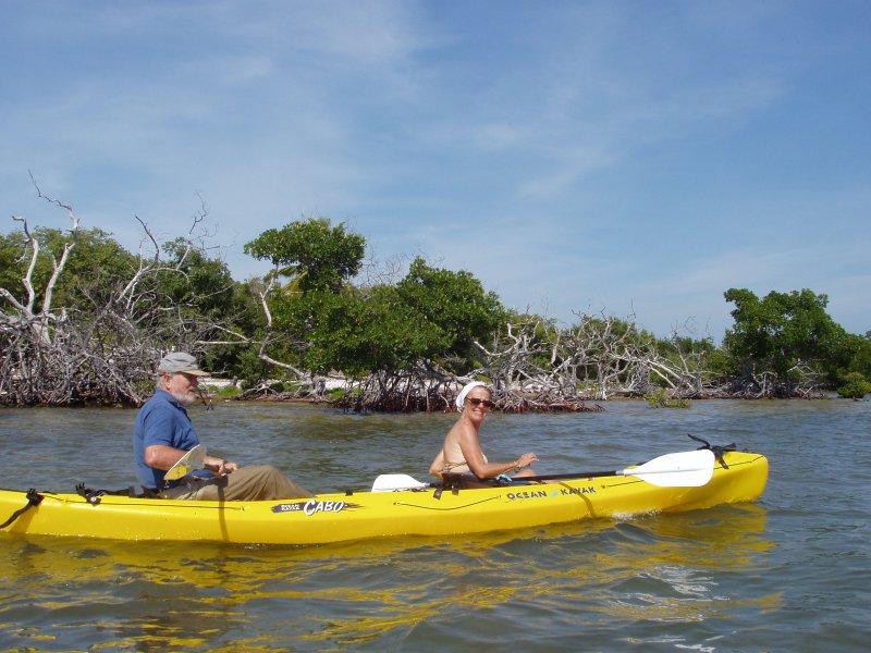 Explorar la la marisma en kayak o junta padddle. El muelle privado una ventaja para todos los deportes acuáticos