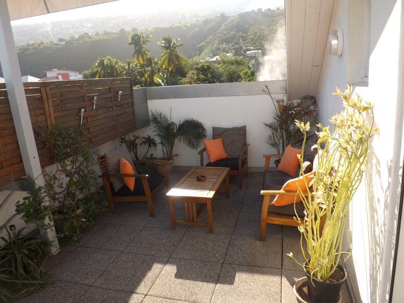terrasse côté salon