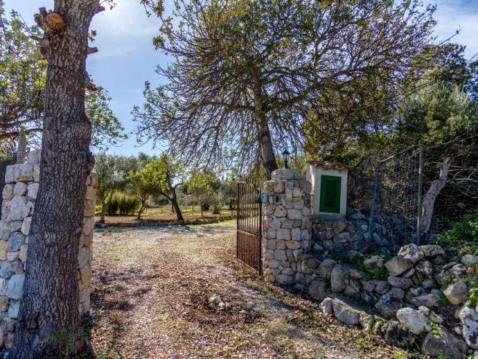 Finca Lucía - Mallorca, España