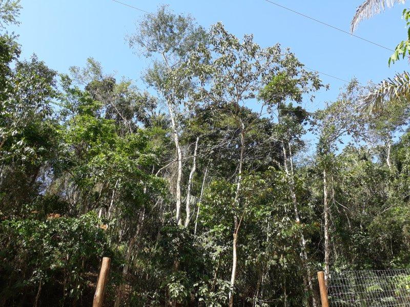 Chalé Paraty Marias, location de vacances à Trindade