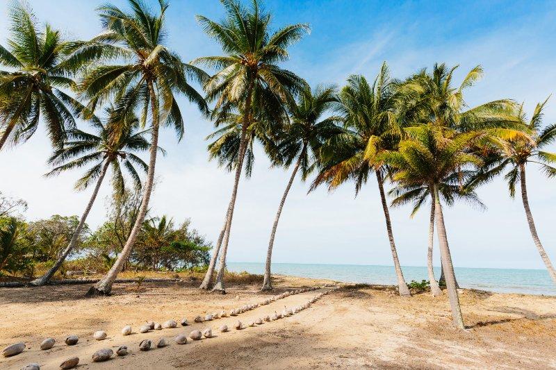 THIRTY ONE DEGREES - Oak Beach, QLD, vacation rental in Port Douglas