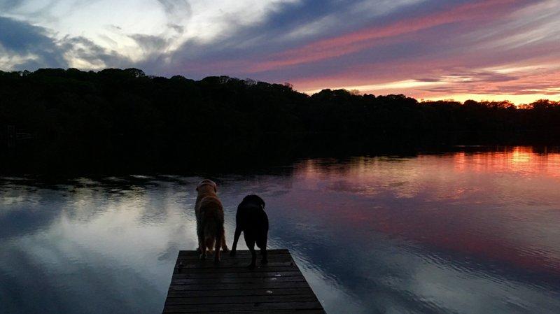 Impresionantes puestas de sol para usted y sus amigos en Crystal Lake. ¿Es muy tarde para nadar?