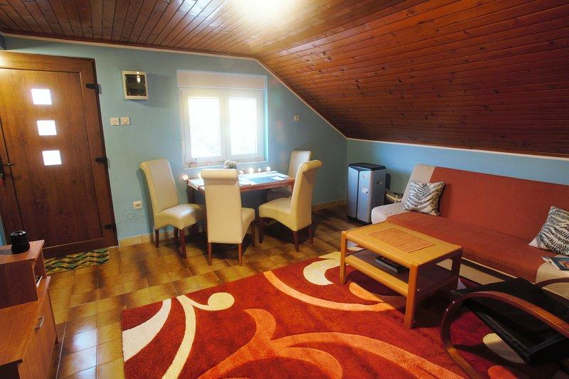 salon et salle à manger spacieuse