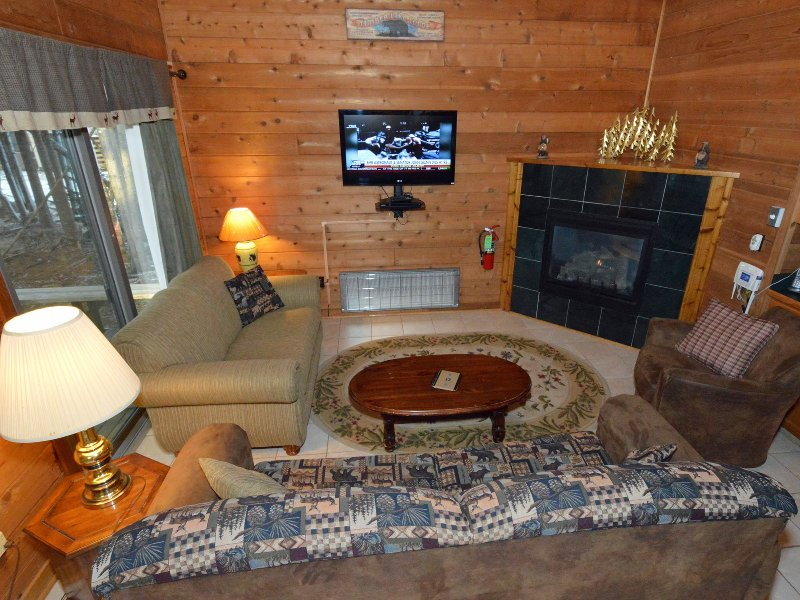 2Br+:   Powder Monkey 12, vacation rental in Snowshoe