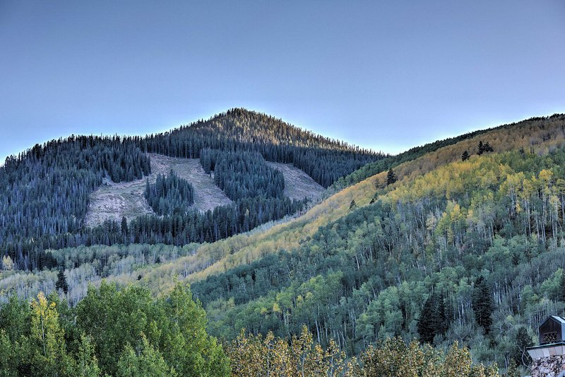 Plan your trip to this beautiful Colorado location today!