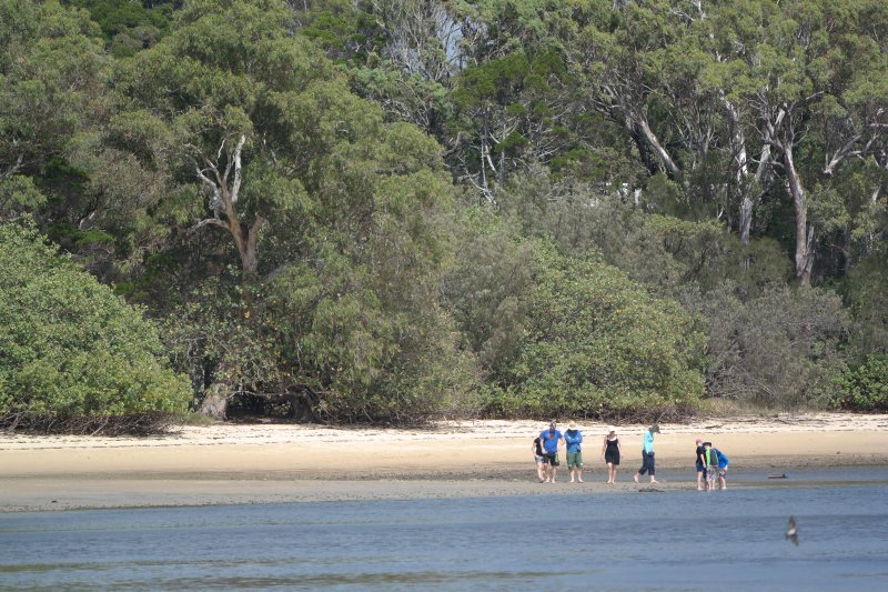Natural sandy bush beaches surround three sides of Coochiemudlo Island. ideal for walking.