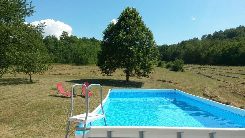 Big house with swimming-pool & Wifi – semesterbostad i Drvar