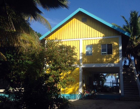 The Gumbo Limbo Studio apartment, holiday rental in Caye Caulker
