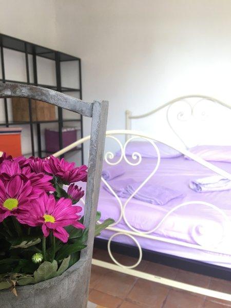 Pietrasanta B&B exclusive access room, holiday rental in Ripa-Pozzi-Querceta-Ponterosso