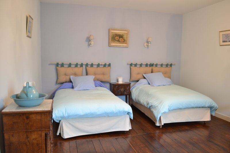 Blue room with bed 120 cm wide each (twin)