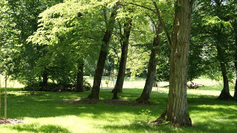 Una vista del parque