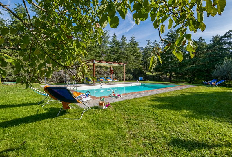 Splendid Villa by Olive Groves and Vinyards at Fontocchio on Cortona, alquiler vacacional en Cortona