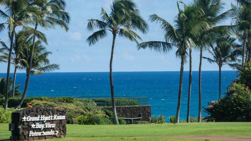 vue reposante de l'océan et palmiers ondoyants qui peuvent être vus de la salle de séjour, et Master Suite