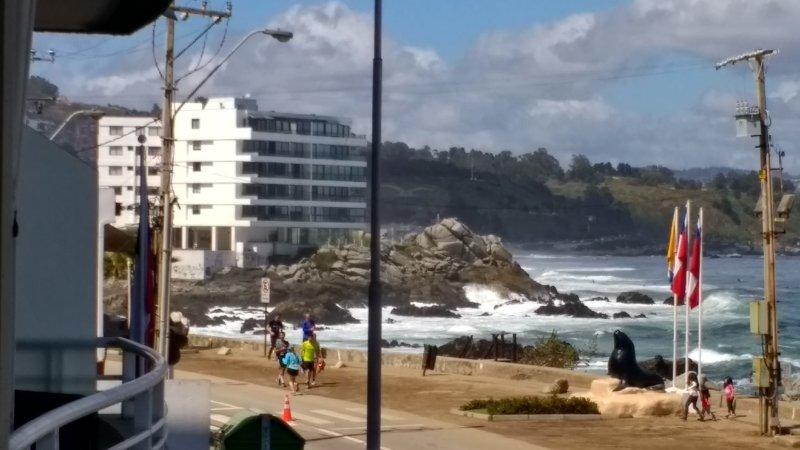 Depto en Reñaca, holiday rental in Vina del Mar