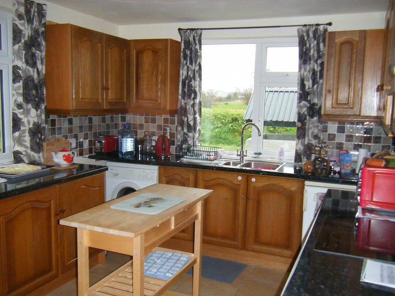 Large house in quiet countryside location ideal for touring West of Ireland, holiday rental in Galway