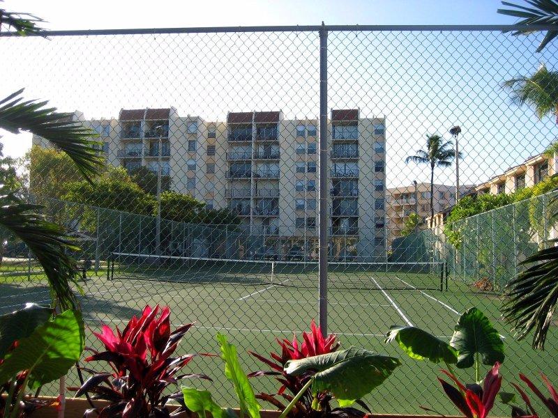 2 courts de tennis éclairés