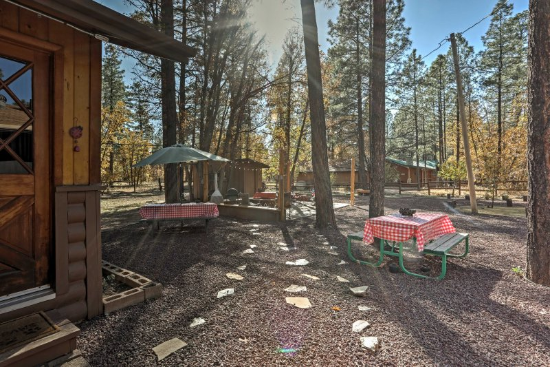 Cozy Pinetop Cabin w/Patio in Woodland Lake Park!, vacation rental in Pinetop-Lakeside