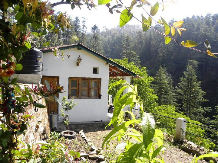 The Cabin by the Woods, vacation rental in Almora District