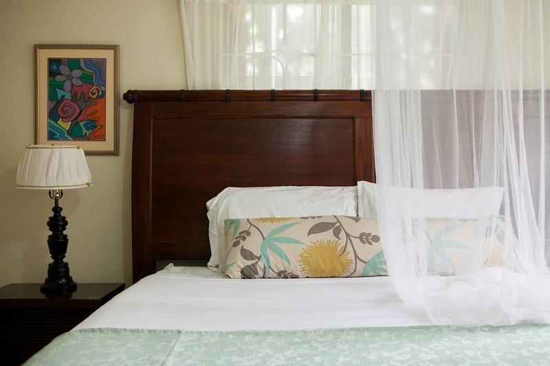 Casa da Buena Vista Bed & Breakfast Apt 1, Mandeville, Jamaica, holiday rental in Mandeville