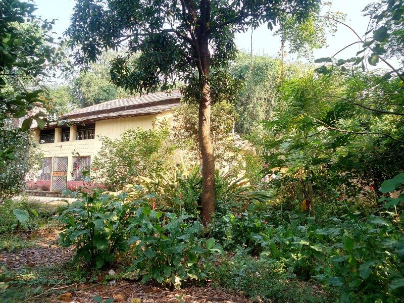 Homestay in villa+farm+garden+terrace Mountain view, vacation rental in Palampur