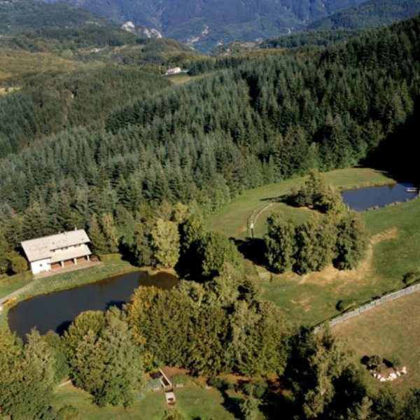 National park of Orecchiella