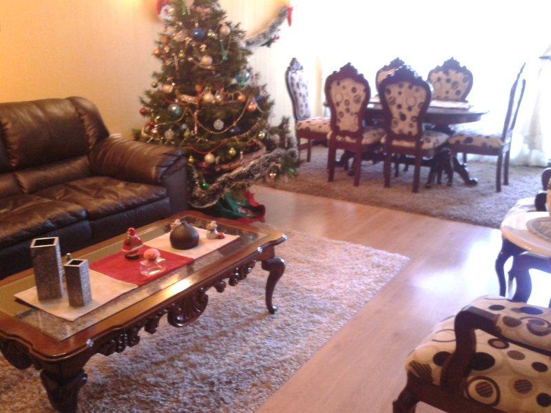 Amplio Departamento 7-8 Personas, holiday rental in Villa Alemana