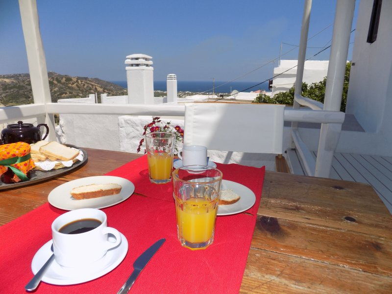 Briar House, Skyros island, holiday rental in Trachi