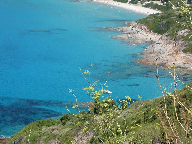 location en corse les pieds dans l'eau, location de vacances à Valle-di-Mezzana