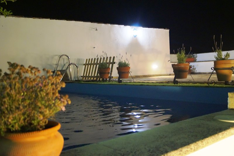 Pool and terrace, open 24 hours.