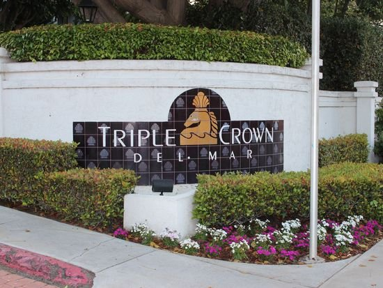 Breeder's Cup Exclusive!, vacation rental in Solana Beach
