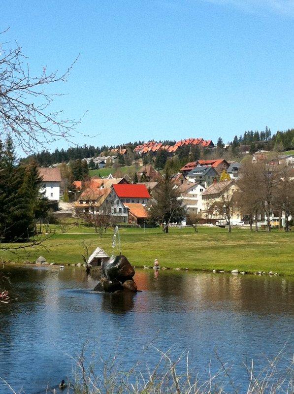 Kurpark - Schonach