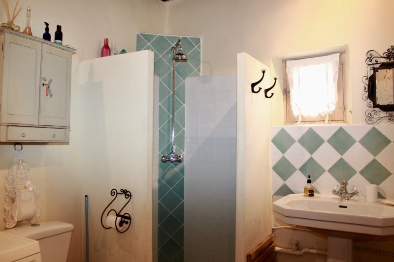 Shower room and toilet with rain shower head