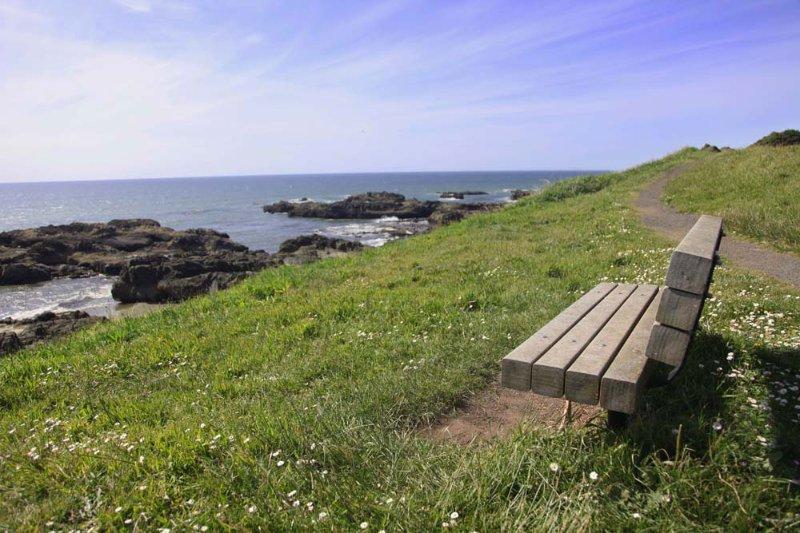 Ou détendez-vous et profitez de l'une des meilleures vues de la côte.