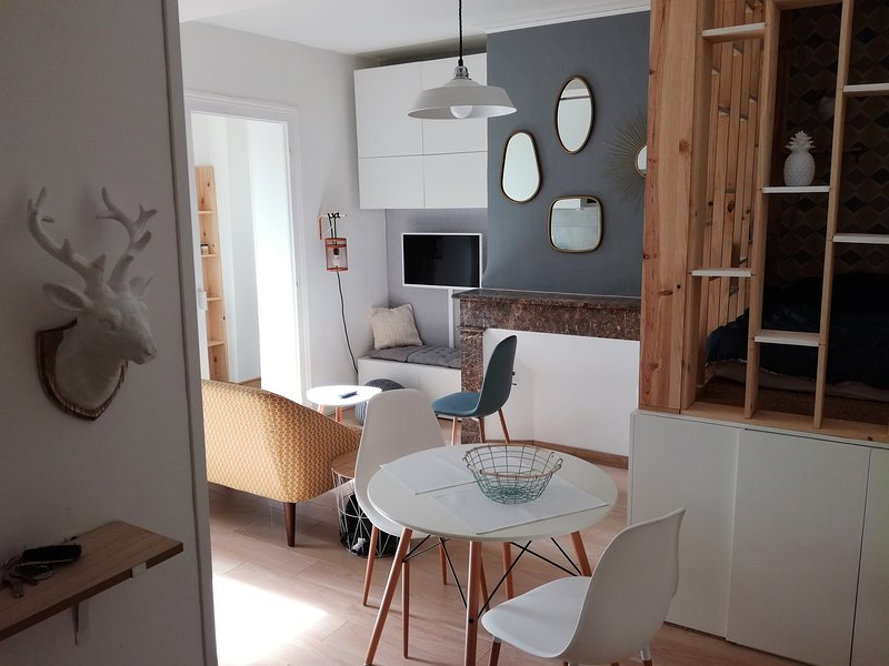 Studio centre Pau, place Verdun, location de vacances à Gan