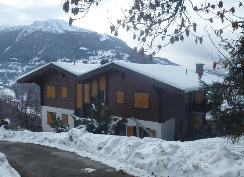 Building in the winter