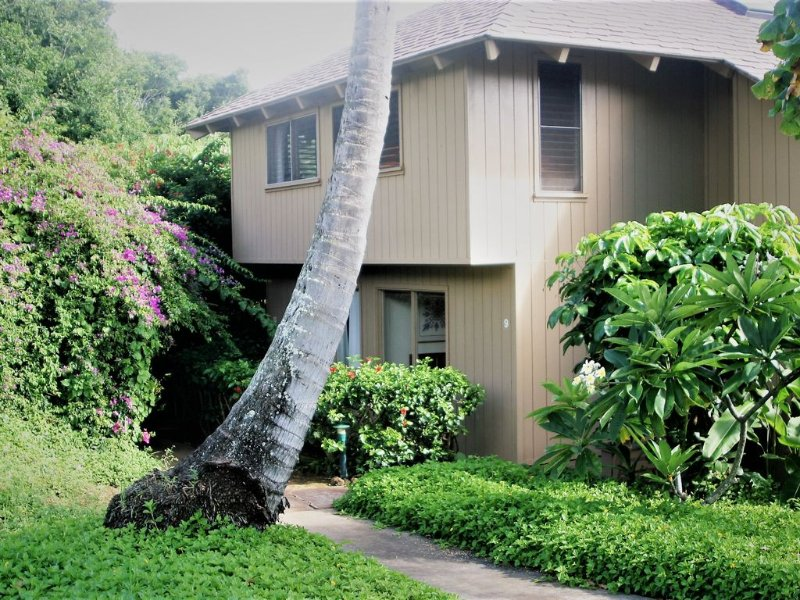 Aloha and welcome to Poipu Crater #9 - Charming, Welcoming, Tropical Privacy, holiday rental in Poipu