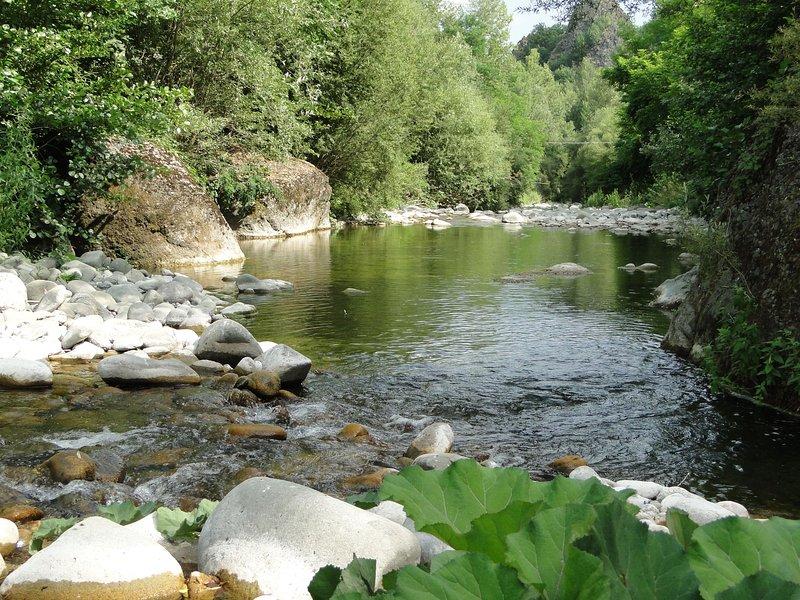 Idílico com sons relaxantes do rio ....