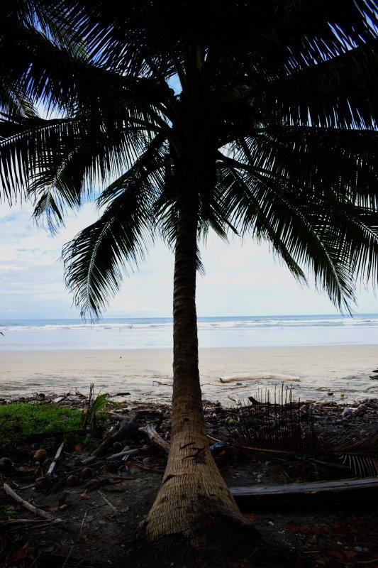 Playa Hermosa (3 minutes walking distance)