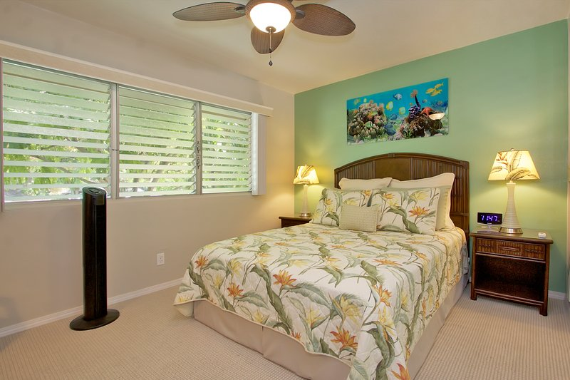 Master Bedroom w / queen size