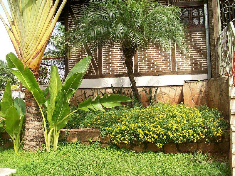 Nos encanta plantas!