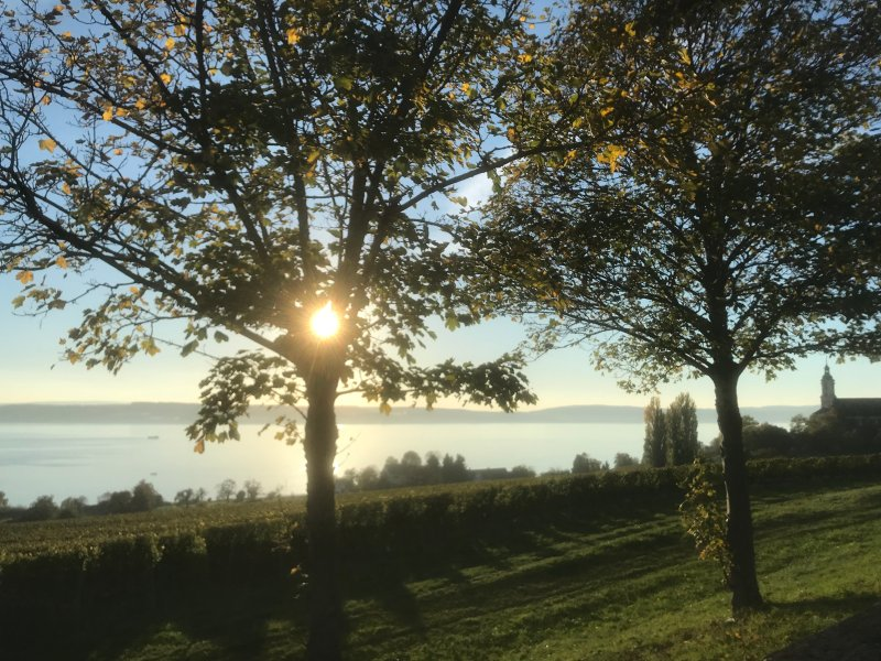 Views of Lake Constance from the Birnau
