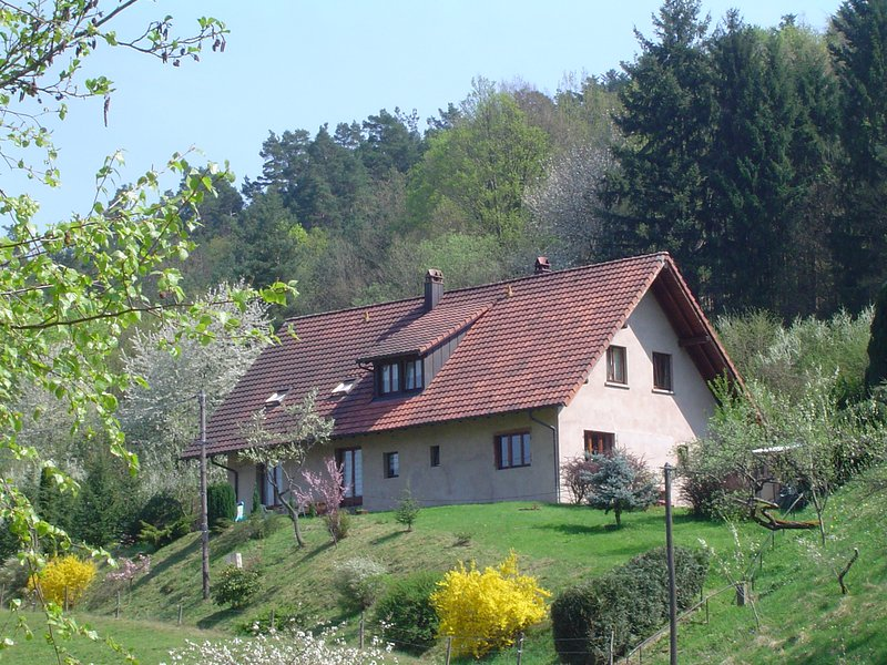 Comfortable holiday home, lovely mountain views, family friendly, quiet location, holiday rental in Albe
