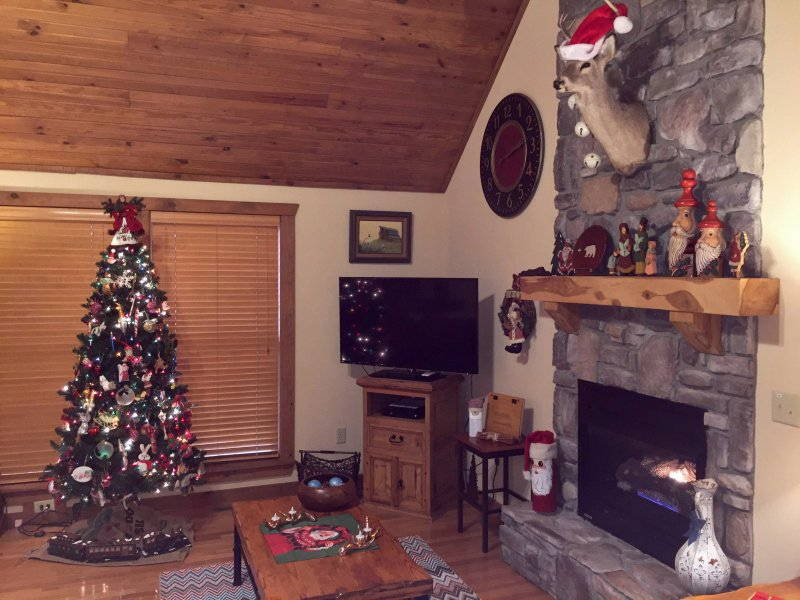 Larger Living Room showing tree, fireplace and big screen TV