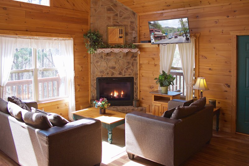 Smoky Mountains Luxury Cabin *Beautiful, Secluded*, vacation rental in Pigeon Forge