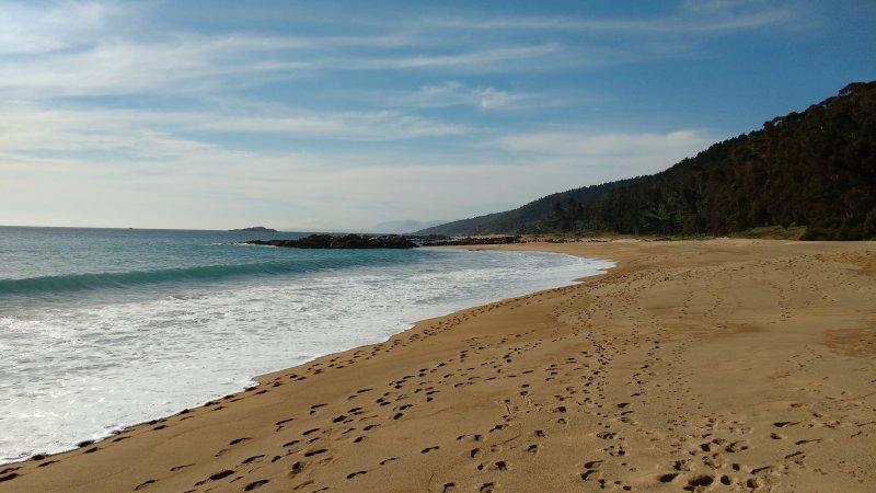 Playa Grande, nearby forest, rocks.