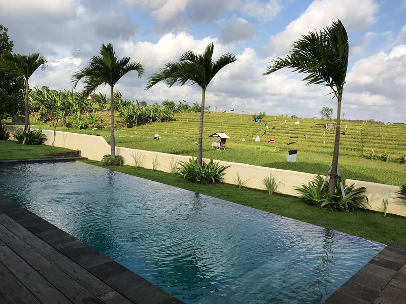 Pool and rice field view