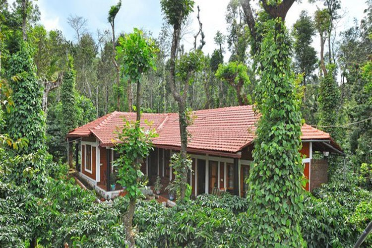 Funstay Amidst Coffee Plantation Coorg - Perfect for Couple, vacation rental in Maragodu