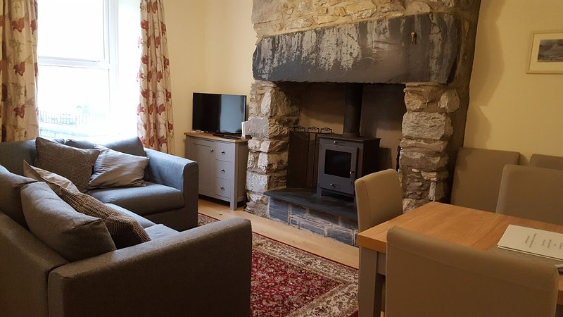 The living room, showing the sofa, TV cabinet and smart TV (satellite and internet), wood stove.
