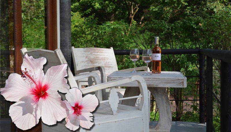 ORCHID LODGE - IBISCUS, holiday rental in Maret